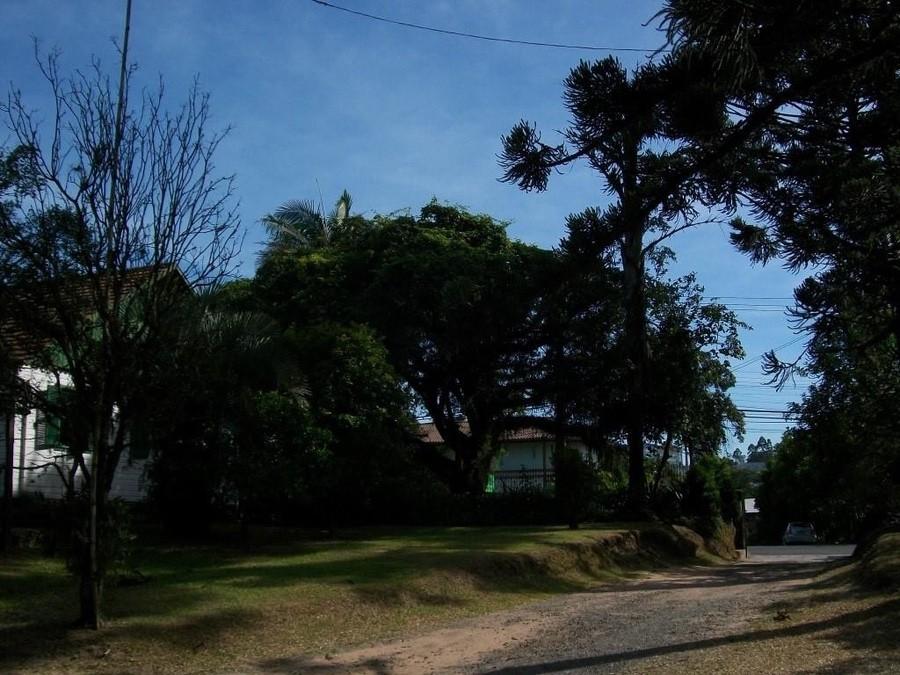 https://www.wallauimoveis.com.br/site/viasw/fotos/1656_39802.jpg